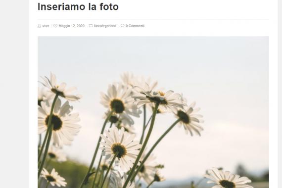 Aggiungere un'immagine di Pixabay su WordPress senza installare plugin