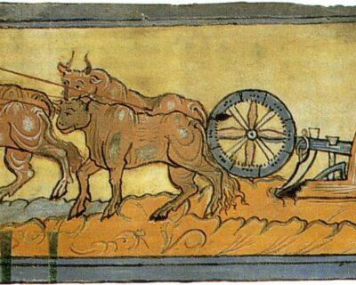 La rivoluzione agricola nel Medioevo