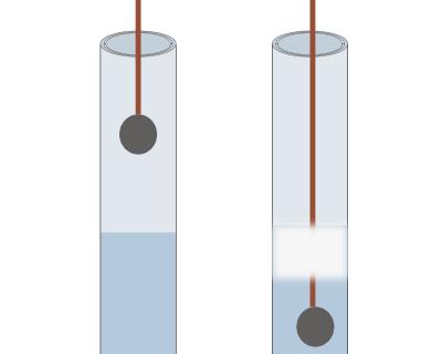 I catalizzatori e la catalisi | Chimica