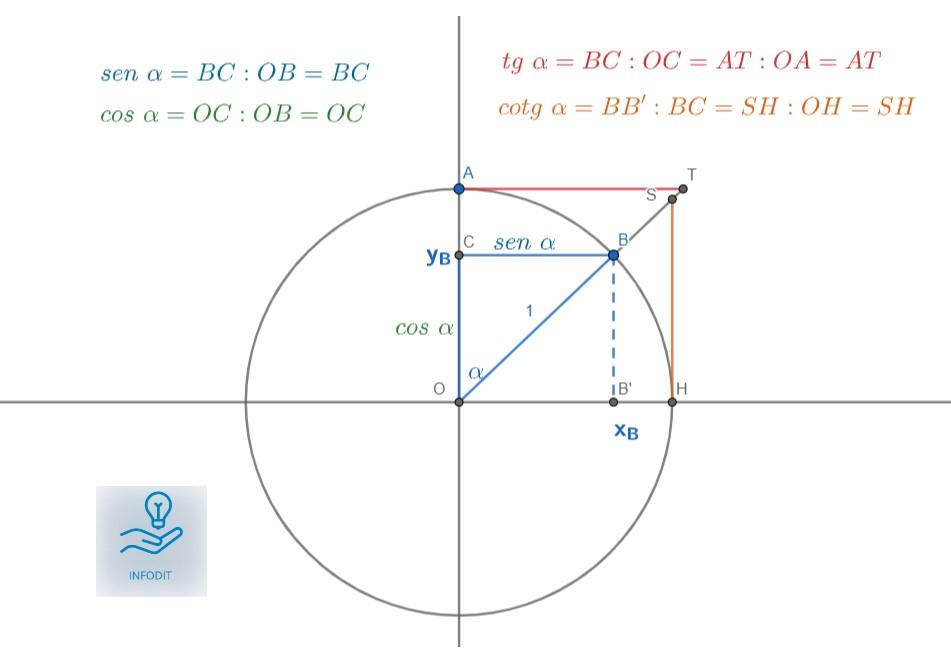 Cerchio goniometrico e cotangente.