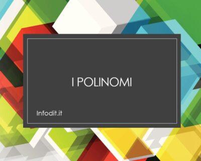 I polinomi